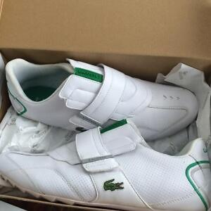 Lacoste brand new shoes