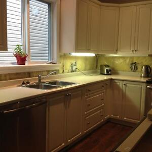 Laminate kitchen countertop