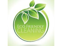 Domestic Cleaning - Eco friendly