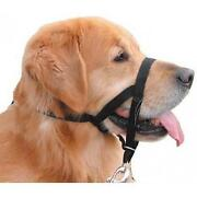 Dog Halti