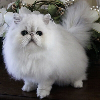 Snowbell looked amazing in Stuart Little