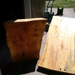 Large Pieces of Finished Live Wood Kitchener / Waterloo Kitchener Area image 1