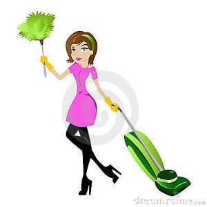 Domestic cleaning business; No Weekends !! 4 days a week only!! Bentleigh Glen Eira Area Preview