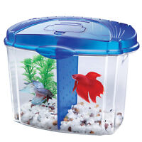 SMALL AQUARIUM BLUE FOR BETTA, COME WITH SOME ACCESOIRES ( avec