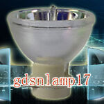 gdsnlamp17