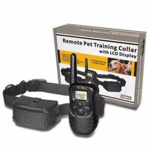 Waterproof Remote Dog Training collar. Cygnet Huon Valley Preview