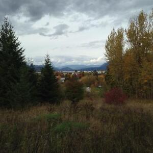 Over 2 acres with lake view in Salmon Arm