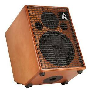 Looking to Buy Acoustic Amp