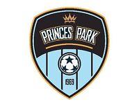 Princes Park Academy U16s and U17s
