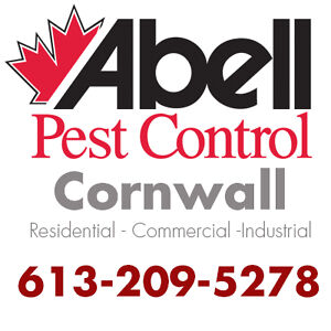 Guaranteed Pest Control Services for Cornwall/613-209-5278