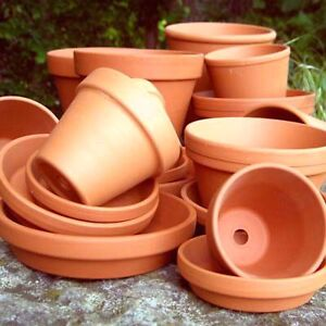 Looking for old flower pots
