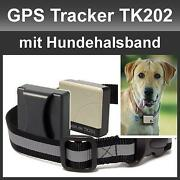 GPS Halsband