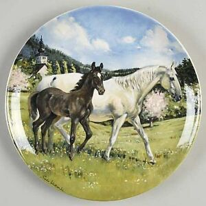 Collector  plates, Horse series, limited edition Mint condition