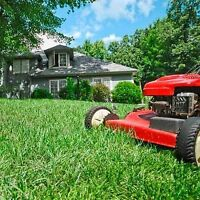 *POWER RAKE*AERATE*SPRING CLEAN UP*LAWN CARE(cut & trim)*