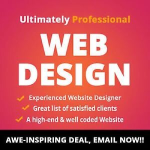 Affordable Website Design Development SEO for $299