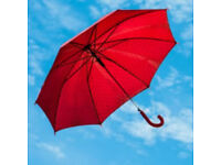 Umbrella Payroll / Accounting Specialist