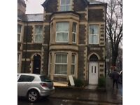 1 bedroom for rent in Cardiff cathays. 3/4 size bed, TV, large living room, garden, 2 bathrooms.