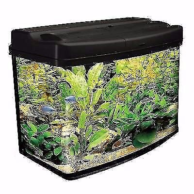 Large Fish tank Tropical Fresh Cold Water Aquarium with lead and builded light