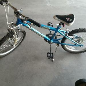 Girls 21 inch bike