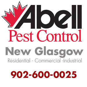 Guaranteed Pest Control Services for New Glasgow/902-600-0025