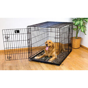 Im looking to buy a XL dog kennel
