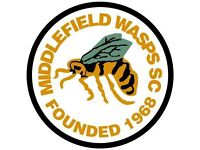 Middlefield Wasps Looking For Players Under 13's