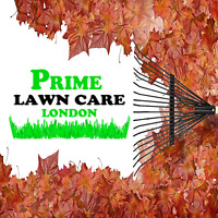 Fall Flower Bed Clean Up / Fall Cleanup and Leaf Bagging