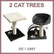 Cat Activity Centre