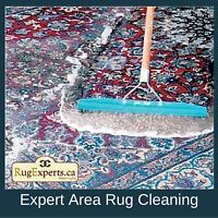Area Rug and Persian Carpet Cleaning