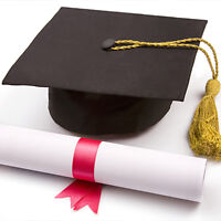 Professional  Private Essay Writer. Pay after full satisfaction.