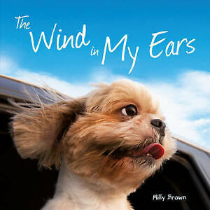 The Wind in My Ears, Brown, Milly, New Book