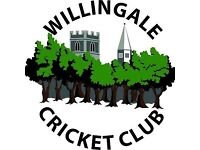 Willingale Cricket Club are looking for new players of all standards