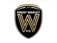 Players Wanted - Great Warley Fc Brentwood Sunday League