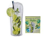 Brand New Still Packaged Mojito Pool Inflatable