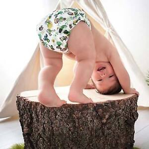 Bummis Pure 6 Pack - The Best Diapers You aren't Using!