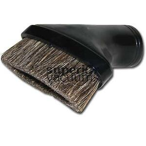 Brush Oval Black Best Quality