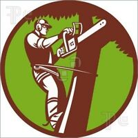 Tree removal and yard cleanup 24 hr Emergency Service