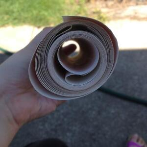 Tulip wallpaper border London Ontario image 2