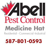 Guaranteed Pest Control Services in Medicine Hat/587-801-0593