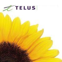 NEW 2 Year Terms TELUS Optik home services