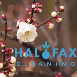 Spring Cleaning From Halifax Cleaning!