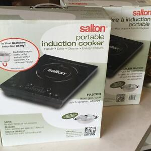 Portable induction cookers