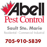 Guaranteed Pest Control Services for Sault Ste. Marie