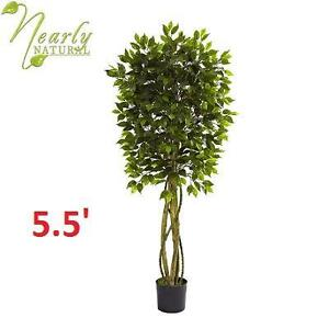 NEARLY NATURAL 5.5' ARTIFICIAL TREE FICUS - UV RESISTANT TREE - GREEN 102715576