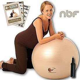 Pregnancy/birthing ball