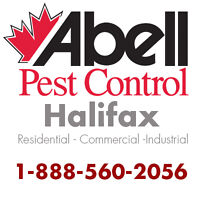 Guaranteed Pest Control Services for Halifax/1-888-560-2056