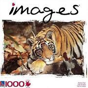 Tiger Jigsaw Puzzle