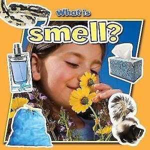 `Aloian, Molly`-What Is Smell? BOOK NEU