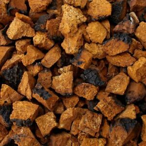 Chaga - 1 lb of Chaga Chunks, Nuggets or Tea Cut 454g