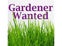 Volunteer Gardener / Landscaper wanted for Primary School grounds